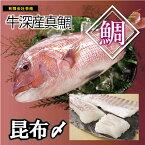 冷凍お刺身シリーズ  真鯛昆布〆 200g(単品) 海鮮 お刺身
