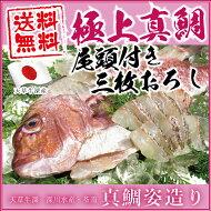 【送料無料】【三枚卸済み】めで鯛☆天草灘一ブランド【尾頭付き】真鯛姿造り(皮付き)約1kg