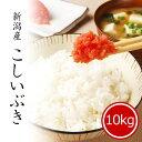【スーパーセール14%OFF】 新米 10kg こしいぶき 令和3年産 お米 送料無料 精米 白米 新潟県産