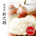 米 10kg 新之助 お米 送料無料 5kg x2袋 新潟県産 しんのすけ 令和2年産