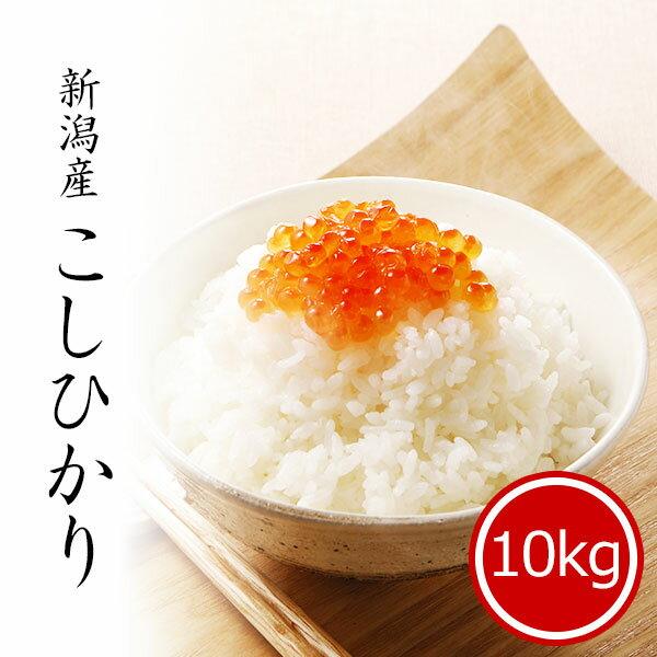 スーパーSALE 米 10kg コシヒカリ 新潟県産 お米 送料無料 令和2年産 精...