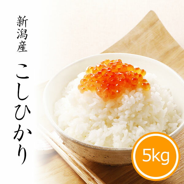 米 5kg コシヒカリ 新潟県産 お米 令和2年産 精米 白米...