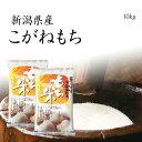 米 もち米 新潟県産こがねもち 10kg おいしいもち米 5kg x2袋 令和元年産 送料無料(本州のみ)