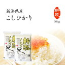 新米 10kg コシヒカリ 新潟県産 お米 送料無料 令和2年産米 精米 白米