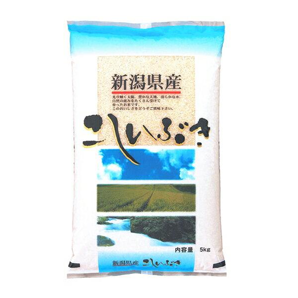 米 5kg こしいぶき令和2年産 お米 精米 白米 新潟県産