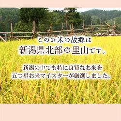 米の品質2