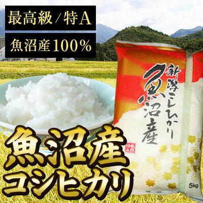 米・雑穀, 白米 A5kgEU50
