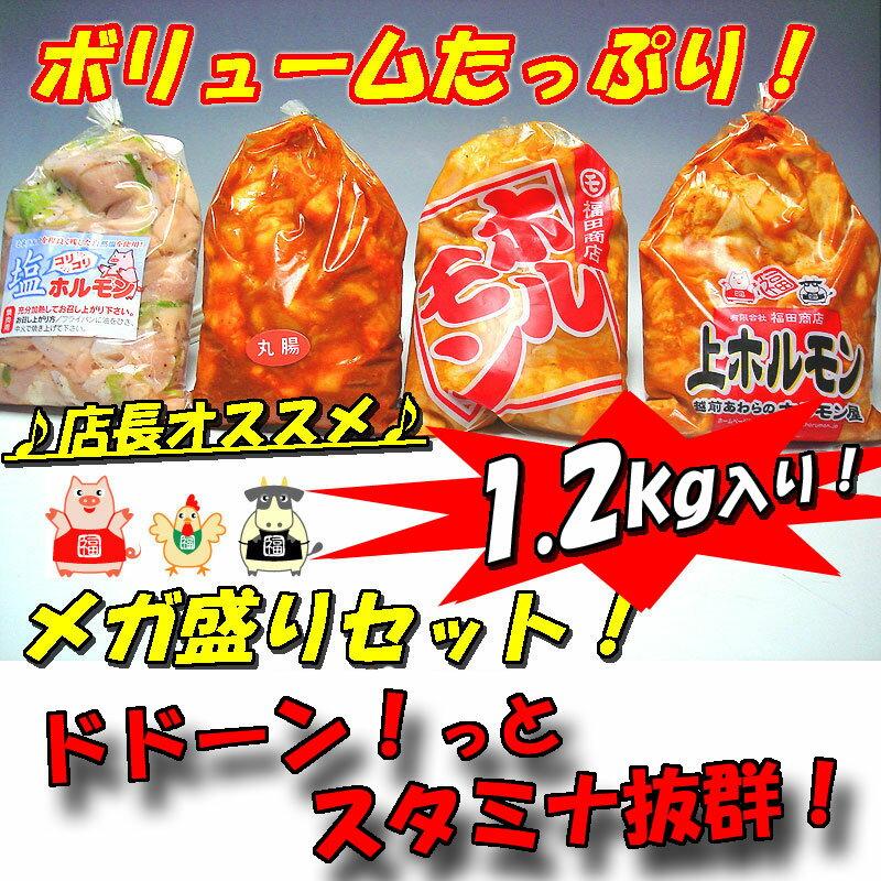 【送料無料】人気ホルモン4種盛りセット1.2kg入り