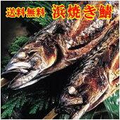 鯖街道が育む半夏生鯖は日本の伝統的スタミナ食