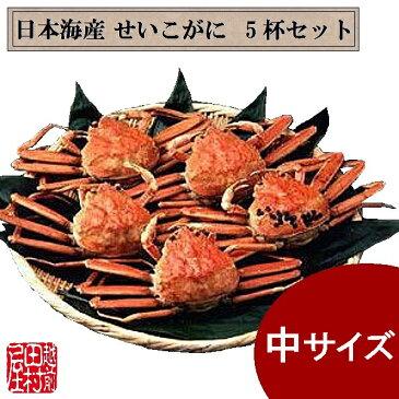 日本海産ゆでせいこがに(中) 5杯セット