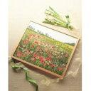 オリムパス製絲 ししゅうキット 7111(オフホワイト) 四季彩の詩 ポピーの咲く頃 (4431g)