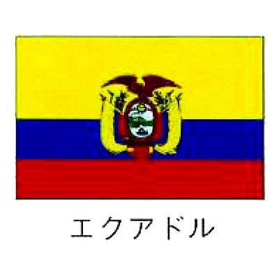 【業務用】旗 世界の国旗 エクアドル 120×180 【 キャンセル/返品不可 】  【】:EC・ジャングル
