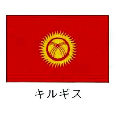 【業務用】旗 世界の国旗 キルギス 120×180 【 キャンセル/返品不可 】  :EC・ジャングル