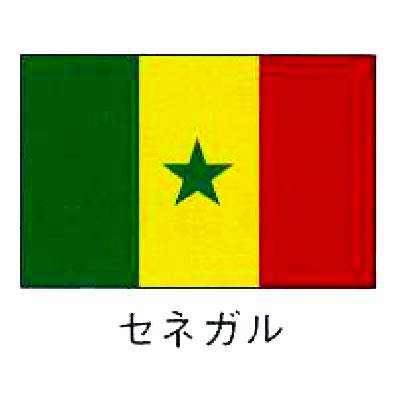【業務用】旗 世界の国旗 セネガル 140×210 【 キャンセル/返品不可 】  :EC・ジャングル