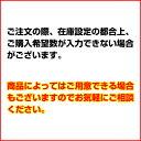 ワルツホーキ オレンジ 【ECJ】 2