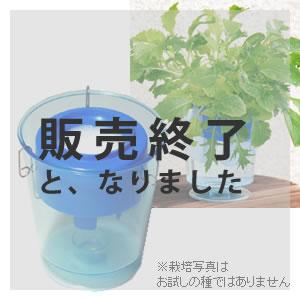土を使わず水と肥料だけで野菜を作ろう!種・肥料もセットですぐに菜園スタート♪[水耕栽培 キ...