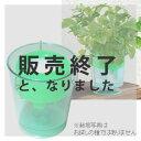 【在庫限りで販売終了】プチ栽培セット・アクアプランターフロートミニ(グリーン)種・肥料付き!値段も大きさもプチサイズ