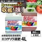 エコゲリラ液肥A・B液(2本組)4L