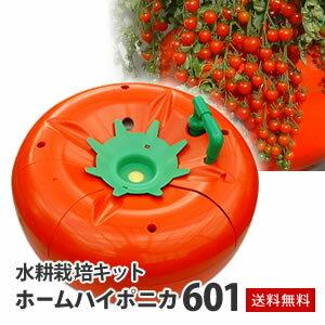 ◆トマトやキュウリなど実物野菜の栽培に◆肥料もセットで安心!【送料無料】水耕栽培キット・...