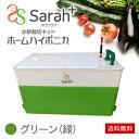 水耕栽培キット・ホームハイポニカSarah+(サラプラス)グリーン(緑)ベランダで簡単野菜づくり!ハイポニカ肥料付!果菜も葉菜もOK!家庭…