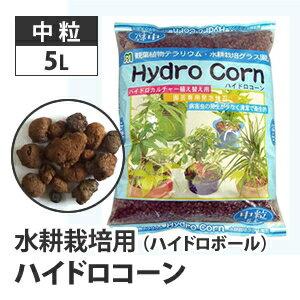 水耕栽培用 ハイドロコーン (ハイドロボール)
