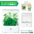 水耕栽培器 Green Farm Cube グリーンファーム キューブ(ホワイト) インテリア としても楽しめるコンパクトなLED 水耕栽培キット ユーイング UH-CB01G【送料無料】