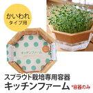 スプラウト栽培専用容器キッチンファーム(かいわれタイプ)※容器のみ