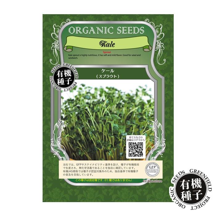 種子, 野菜の種子 12