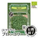 【種】有機種子 ブロッコリー<スプラウト> 小袋 S(14g)抗ガン作用が期待されるスーパースプラウト!人気の野菜を取り揃え![有機栽培…