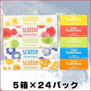 【送料無料】スコッティフラワーボックス5箱×24パック【smtb-td】