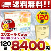 キュート ティッシュペーパー 大王製紙 ティッシュ まとめ買い 4902011712315 ティシュー 段ボール