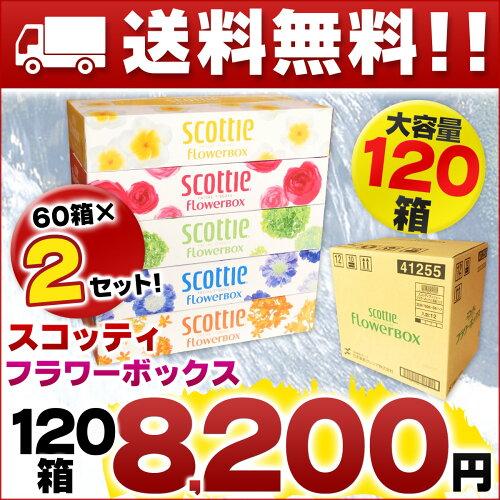 スコッティ フラワーボックス 160組 120箱(5箱×24パック)【日本製紙クレシア ティ...