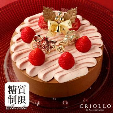 クリスマスケーキ スリム・ニルヴァナ ノエル(5号:15cm)【冷凍便】【糖質制限ケーキ】【送料込】