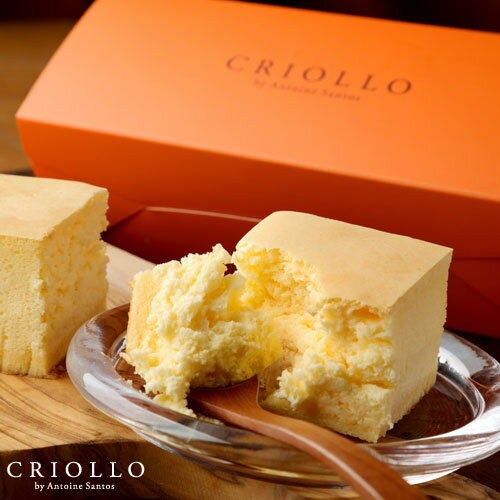 母の日遅れてごめんね202110分間で2000本  幻のチーズケーキ(長方形)約2〜3名用 冷凍便  最短2〜3営業日で出荷
