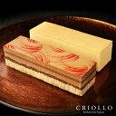 【セット】幻のチーズケーキ+プラリネ・ノワゼット 食べ比べ(長方形)【冷凍便】チョコレートケーキスイーツ ギフト