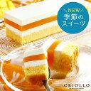 夏限定 レアチーズ・マンゴー 長方形 2