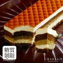 【糖質制限ケーキ】スリム・ティラミス 2〜3名様用【長方形】【冷凍便】