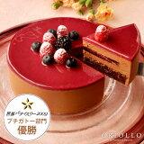 【チョコレートケーキ】ニルヴァナ5号(直径15cm)約4〜6名様向け ブラックベリーとチョコレート【冷凍便】【あす楽対応】
