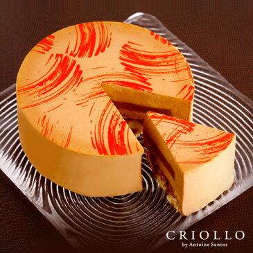 【チョコレートケーキ】プラリネ・ノワゼット 直径15cm(5号) 約4〜6名様向け【冷凍便】