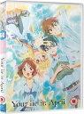 四月は君の嘘 コンプリート DVD-BOX1 (1-11話) アニメ 君嘘 輸入版 DVD