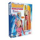 スマートラボ 人体模型 Squishy Human Body...