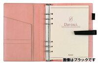 レイメイ藤井DavinciGRANDE(ダ・ヴィンチグランデ)システム手帳ジャパンアースレザーDSA1702CブラウンA5サイズリング25mm