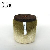 jar_olive