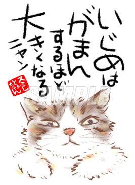 スミレとぉちゃんのメッセージはがき 猫シリーズ   いじめはがまんするほど 【メール便対応】【 葉書 和製はがき ポストカード メッセージカード 癒し 和み 言葉 絵 】