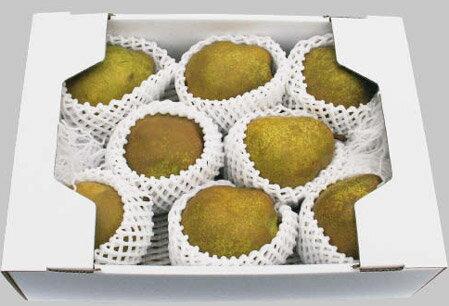フルーツ・果物, 洋梨  3kgMMCe01111231