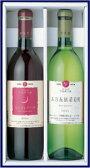 エーデルワイン LTA 辛口 甘口 ギフト赤白セット 2本セット 五月長根葡萄園 白 月のセレナーデ 赤国産ワイン 日本ワイン 受賞ワイン ライトボディ お中元 ワイン プレゼント