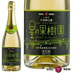 エーデルワイン星の果樹園スパークリングワイン(白)