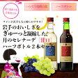 送料無料エーデルワイン 月のセレナーデ 甘口 選べる!ハーフ2本セット日本ワイン ワインセット 女子会