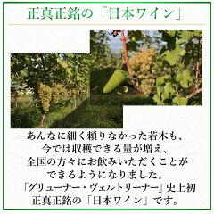 正真正銘の「日本ワイン」