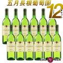 【送料無料】 国内外のコンクールで連続入賞 世界が認めた白ワイン 五月長根葡萄園 リースリングリオン 2018 白 12本セット やや辛口 720ml 12本 セット 受賞ワイン ワイン やや辛口 エーデルワイン 日本ワイン